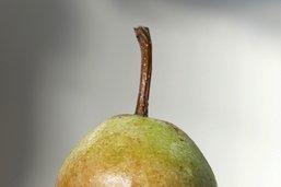 La poire à Botzi AOP sublimée