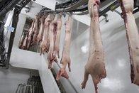 «Sit-in» d'anti-spécistes devant un abattoir fribourgeois