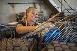 A Paléo, la gestion des gobelets est un métier à plein temps
