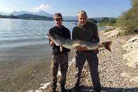 Un brochet de 130 cm sorti du lac de la Gruyère!