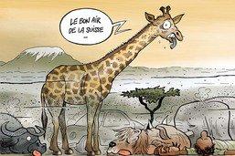 L'Afrique intoxiquée par des carburants nocifs vendus par la Suisse