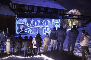 Festival des Lumières à Morat