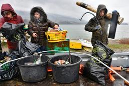 Nettoyage des rives du lac de la Gruyère