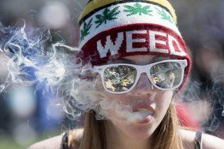 Légalisation du cannabis prévue en 2018, envolée en Bourse