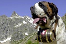 Le territoire alpin à l'honneur au Salon des Goûts et Terroirs