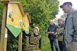 Flâner à la découverte des abeilles