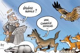 Louve et autres bêtes sauvages empoisonnées en Gruyère