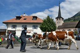 Grandvillard, plus beau village de Suisse?