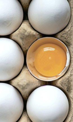 Le scandale des œufs est dû à un produit décrié, le fipronil.  © Keystone