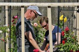 Festival des roses à Estavayer