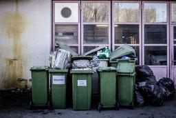 L'Eldorado dans nos ordures