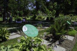 Le Jardin botanique repense son «système»