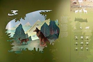 Le loup cartonne au Musée d'histoire naturelle