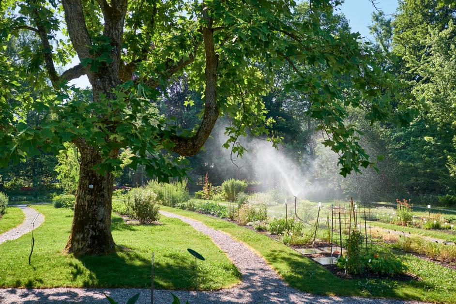 R organisation du jardin botanique la libert for Boulevard du jardin botanique 20