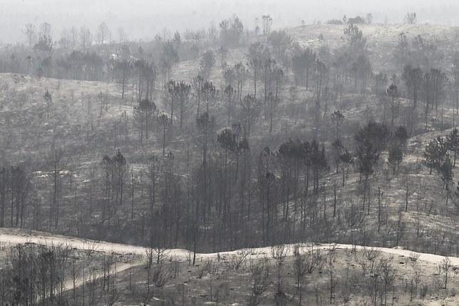 Les principaux incendies maîtrisés au Portugal