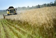 L'agriculture séduit toujours les jeunes