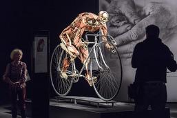 L'exposition Body Worlds laisse de marbre le Conseil d'Etat
