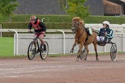 Les poneys trotteurs de retour en piste à Avenches