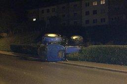 Un tracteur s'échoue dans une haie de thuyas à Marsens