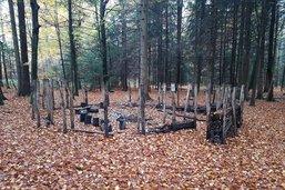 Des vandales ont sévi dans le bois de Moncor