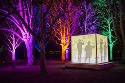 Le Festival des Lumières est de retour à Morat