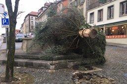 Chutes d'arbres et routes coupées dans le canton de Fribourg