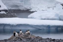 La hausse du niveau des océans s'accélère (étude)