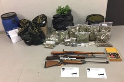 Cannabis et armes à feu dans un rural à Vaulruz