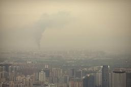L'ONU veut éviter les assassinats de défenseurs de l'environnement