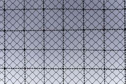 Libération conditionnelle rare pour les condamnés à l'internement