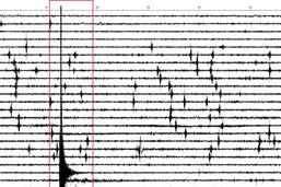 Le nord de la Suisse secoué par un tremblement de terre