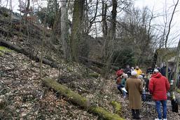 Non à la pétition en faveur de la forêt du Flon à Lausanne