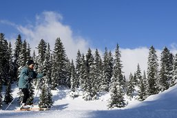 Controverse sur le ski de fond à la Vallée de Joux (VD)