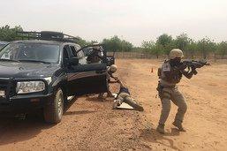"""Opérations """"en cours"""" contre Boko Haram dans le bassin du lac Tchad"""