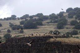 Les forces iraniennes en Syrie visent le Golan, Tsahal réplique