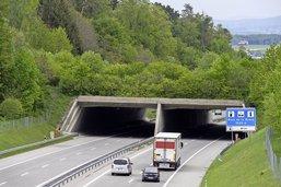 Un pont vert pour la faune sauvage