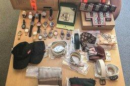 Zurich: arrestation de dix vendeurs de contrefaçons en ligne
