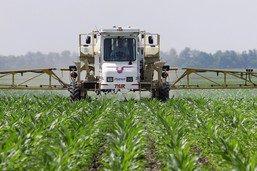 Les ventes d'herbicides en Suisse baissent depuis 2008