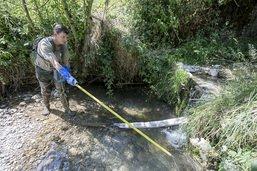 Sécheresse: cours d'eau amaigris et risque d'incendie de forêts