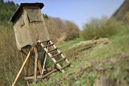 Huit miradors de chasse endommagés près de Winterthour (ZH)