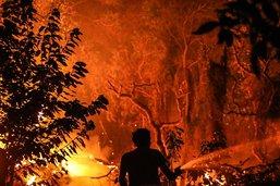 Lourd bilan de la canicule en Europe, le feu menace une ville au Portugal