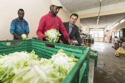 Agriculture: des modules de formation prévus pour les réfugiés