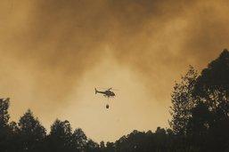 Le Portugal peine à maîtriser l'incendie de forêt en Algarve