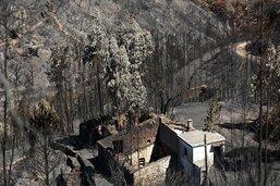 Feu de forêt au Portugal: les pompiers profitent d'une accalmie