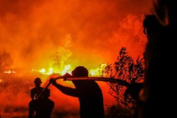 Le Portugal maîtrise un feu de forêt après une semaine