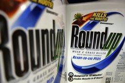 Procès du Roundup: Monsanto lourdement condamné aux Etats-Unis