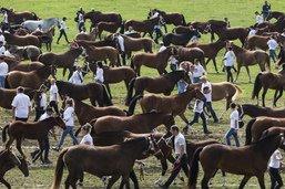 Quelque 55'000 personnes à la fête du cheval à Saignelégier (JU)