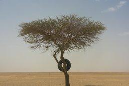 La ville nigérienne d'Agadez menacée par les eaux