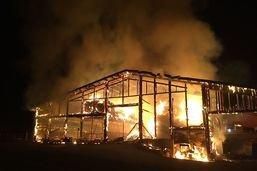 Des vaches périssent dans un incendie à Montévraz (FR)