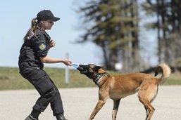 Jeune femme retrouvée par un chien policier à Neuchâtel